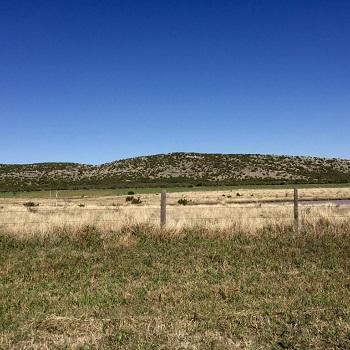 longhorn mountain